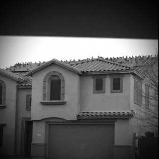 Pigeons gathered on top of roof in Surprise, AZ