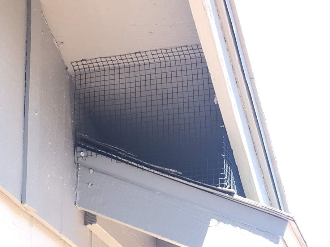 Mesh bird netting under roof eave on two story house