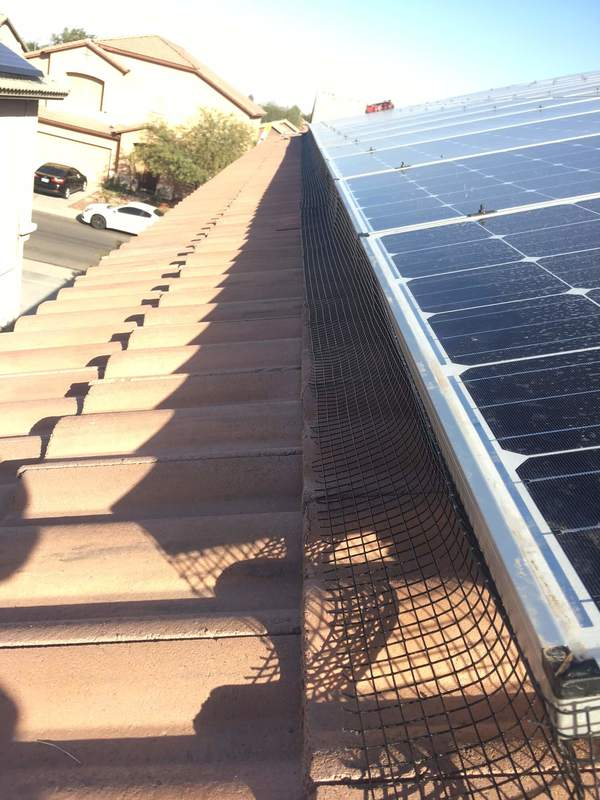Netting placed around solar panels to prevent bird from getting underneath
